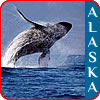Save on discounted last minute Alaska cruises.