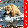 Check out the latest in Alaska Cruise Deals.